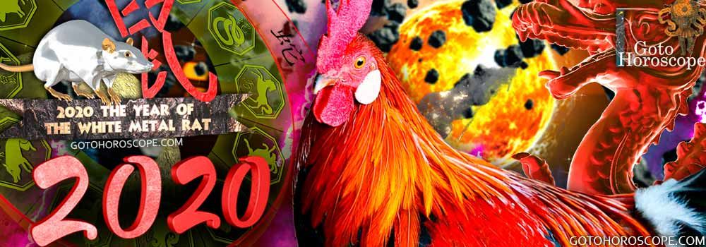 Rooster 2020 Horoscope for the White Metal Rat Year