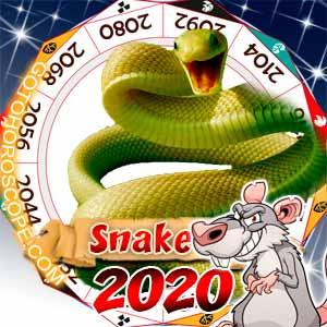 2020 Horoscope for Snake
