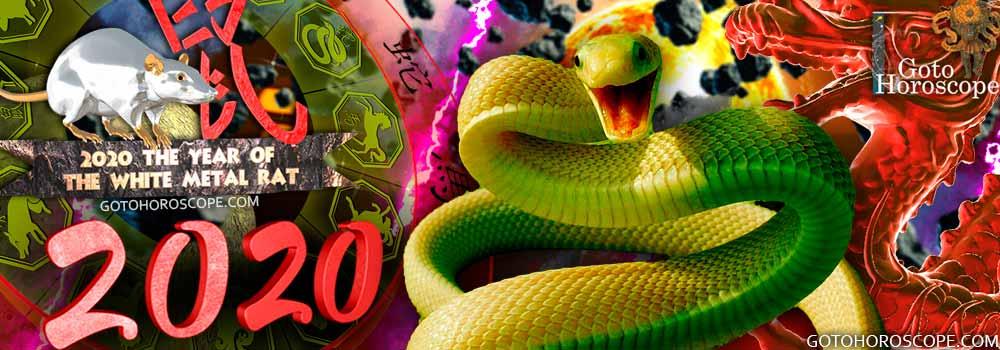 Snake 2020 Horoscope for the White Metal Rat Year