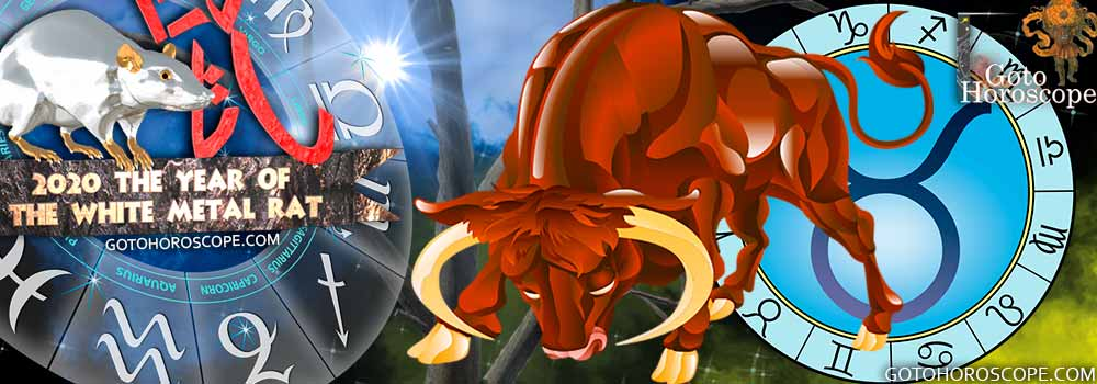 Taurus 2020 Horoscope in the Health Sphere