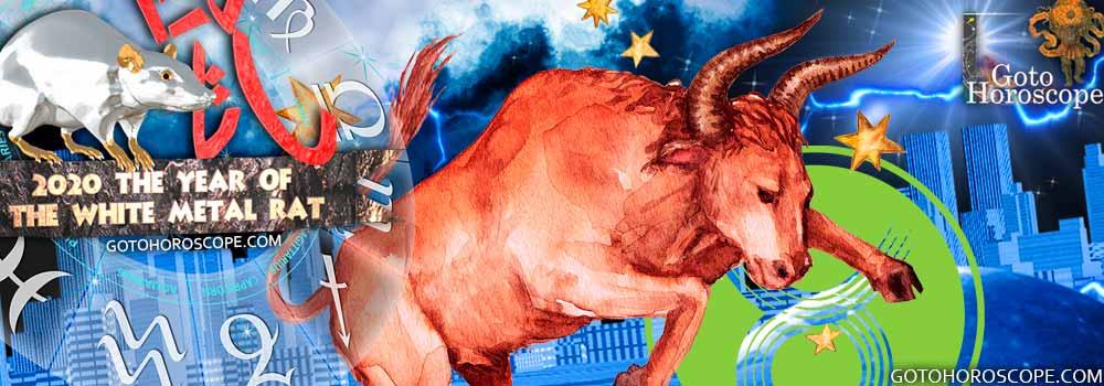 Taurus 2020 Horoscope in the Money Sphere