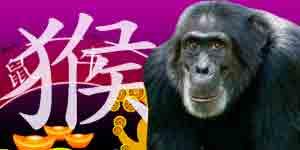 Chinese Horoscope 2021 Free Chinese New Year Horoscope For The 2021 White Ox Year Share astrologizeme.com with your friends. gotohoroscope