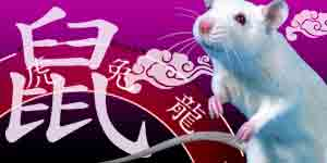 Chinese Horoscope 2021 Free Chinese New Year Horoscope For The 2021 White Ox Year Find out what the new chinese astrology fortune year may have in store for you today! gotohoroscope