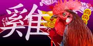 Chinese Horoscope 2021 for Rooster