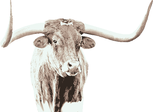 Yearly Horoscope 2021 the White Ox Image