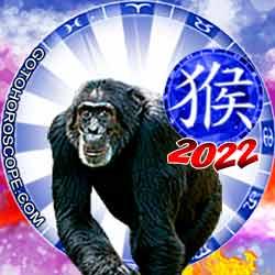 Monkey Chinese New Year Horoscope 2022