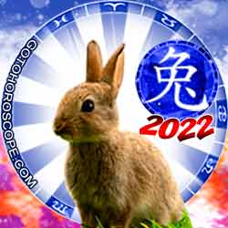 Rabbit Chinese New Year Horoscope 2022