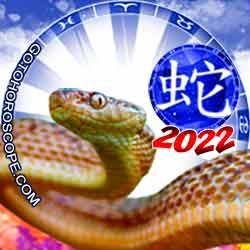 Snake Chinese New Year Horoscope 2022