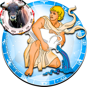 Aquarius Ox Chinese Horoscope and Zodiac Personality