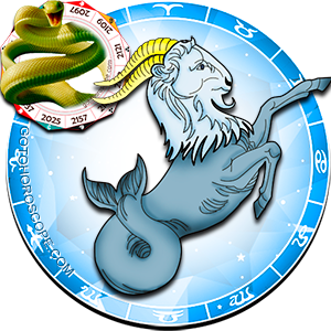 Capricorn Snake Chinese Horoscope and Zodiac Personality