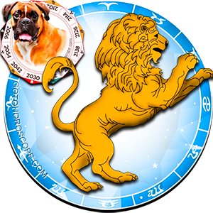 Leo Dog Chinese Horoscope and Zodiac Personality