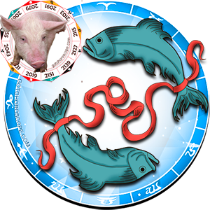 Pisces Personality born in Pig year