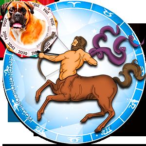 Sagittarius Personality born in Dog year