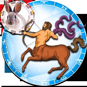 Sagittarius Rabbit Chinese Horoscope and Zodiac Personality