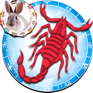 Scorpio Rabbit Horoscope, The Contemporary Scorpio Rabbit