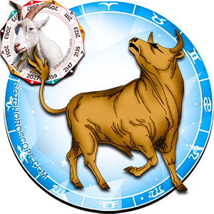 Taurus Personality born in Ram year