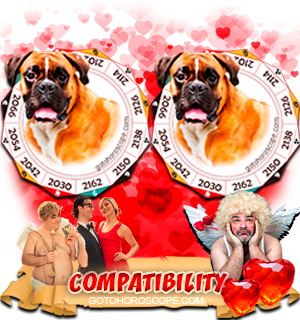 Dog Dog Zodiac signs Compatibility Horoscope