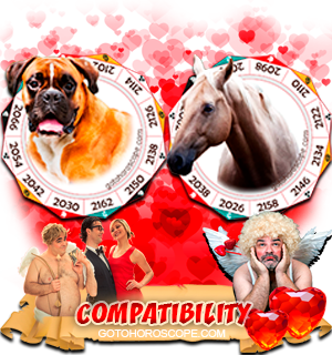 Dog Horse Zodiac signs Compatibility Horoscope
