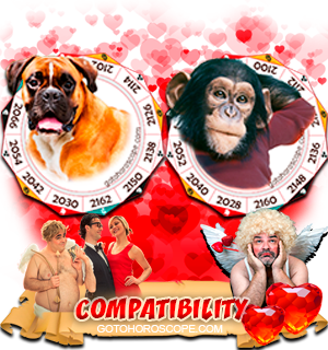 Dog Monkey Zodiac signs Compatibility Horoscope