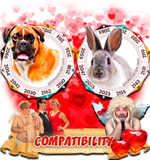 Dog Rabbit Zodiac signs Compatibility Horoscope