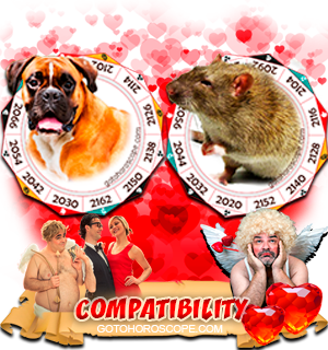 Dog Rat Zodiac signs Compatibility Horoscope