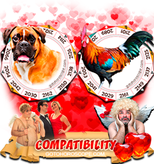 Dog Rooster Zodiac signs Compatibility Horoscope