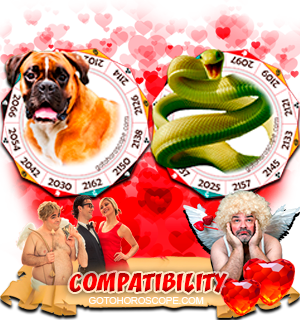 Dog Snake Zodiac signs Compatibility Horoscope