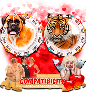 Dog Tiger Zodiac signs Compatibility Horoscope