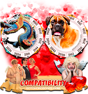 Dragon Dog Zodiac signs Compatibility Horoscope