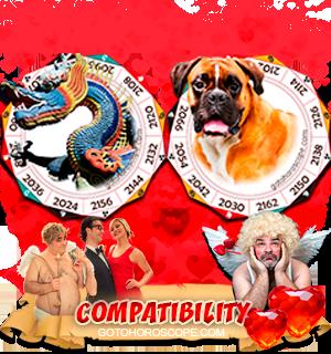 Dragon Dog Zodiac signs Compatibility Horoscope