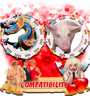 Dragon Pig Zodiac signs Compatibility Horoscope