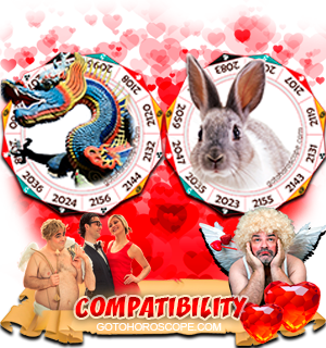 Dragon Rabbit Zodiac signs Compatibility Horoscope