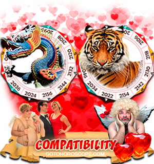 Dragon Tiger Zodiac signs Compatibility Horoscope