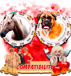 Horse Dog Zodiac signs Compatibility Horoscope
