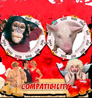 Monkey Pig Zodiac signs Compatibility Horoscope