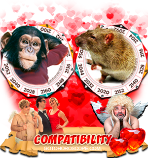 Monkey Rat Zodiac signs Compatibility Horoscope