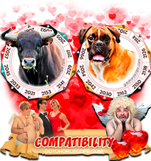 Ox Dog Zodiac signs Compatibility Horoscope