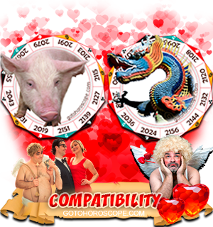 Pig Dragon Zodiac signs Compatibility Horoscope