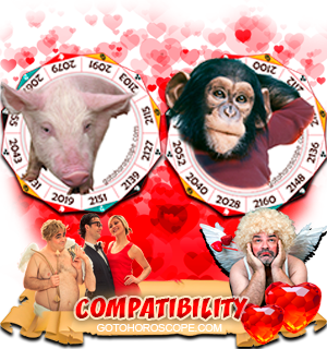 Pig Monkey Zodiac signs Compatibility Horoscope