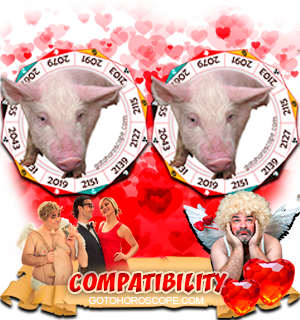 Pig Pig Zodiac signs Compatibility Horoscope