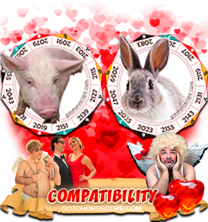 Pig Rabbit Zodiac signs Compatibility Horoscope