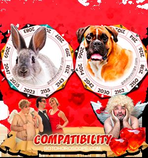 Rabbit Dog Zodiac signs Compatibility Horoscope