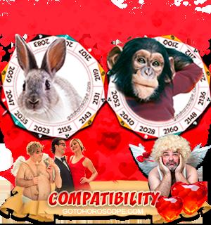 Rabbit Monkey Zodiac signs Compatibility Horoscope
