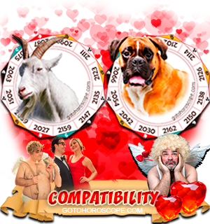 Ram Dog Zodiac signs Compatibility Horoscope