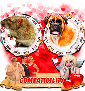 Rat Dog Zodiac signs Compatibility Horoscope