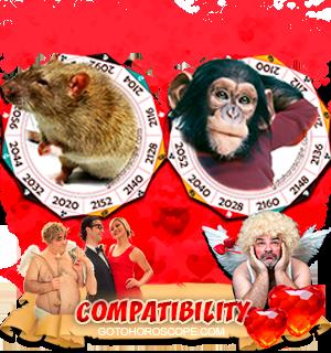 Rat Monkey Zodiac signs Compatibility Horoscope
