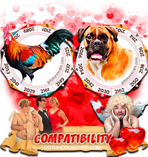Rooster Dog Zodiac signs Compatibility Horoscope