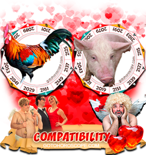 Rooster Pig Zodiac signs Compatibility Horoscope