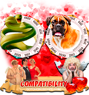 Snake Dog Zodiac signs Compatibility Horoscope