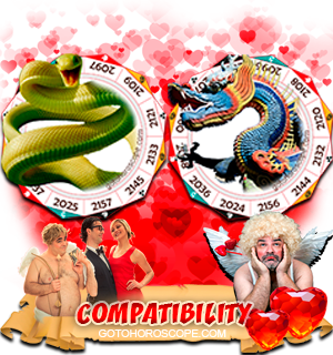 Snake Dragon Zodiac signs Compatibility Horoscope